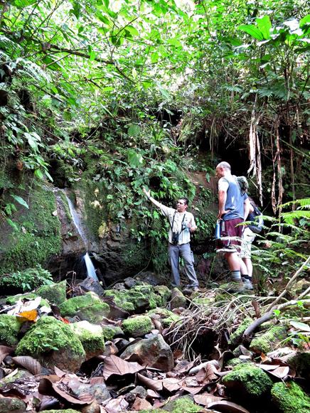 Green Lagoon – Tour: kleine Wasserfälle