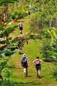 Green-Lagoon-Wanderung-durch-den-ANC-Park