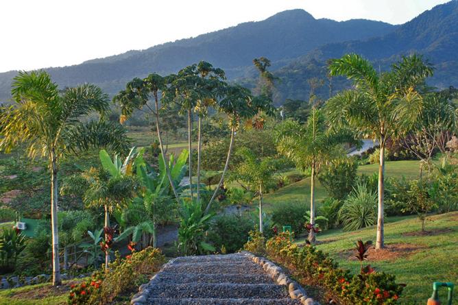 Green Lagoon – Gartenanlage mit Aufgang zum Honeymoon-Bungalow