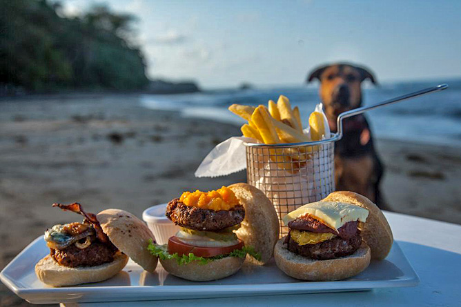 Le Cameleon NOA Beach Club Snacks