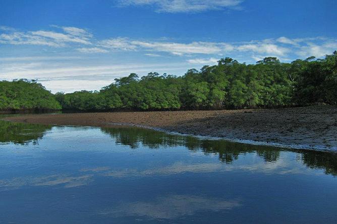 Rip Jack Inn – Flussmündung Río Matapalo