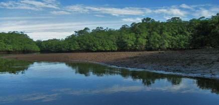 Rip-Jack-Inn-Flussmündung-Río-Matapalo