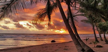 Rip-Jack-Inn-Playa-Grande