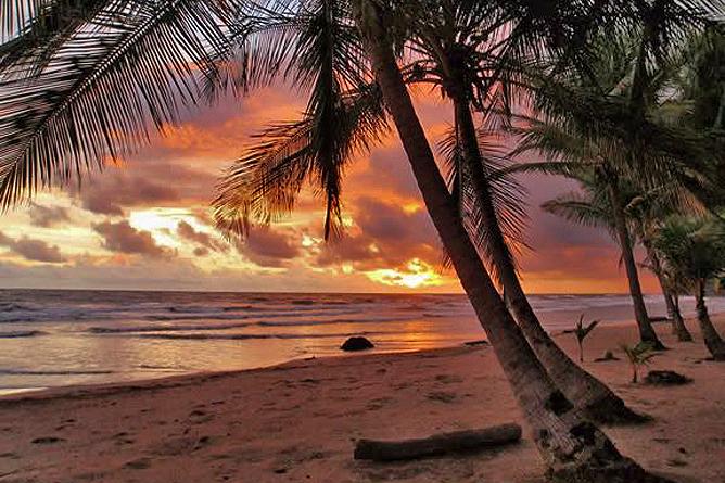 Rip Jack Inn – Playa Grande