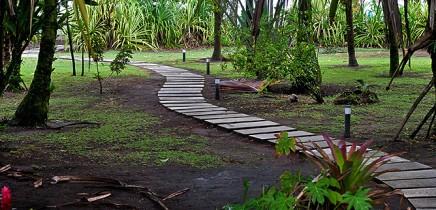 Turtle-Beach-Gartenanlage-Weg
