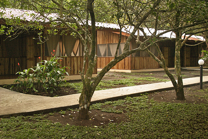 Turtle Beach Lodge – Standard-Zimmer Bungalow