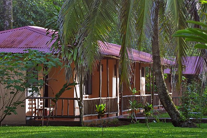 Turtle Beach Lodge – Standard-Zimmer mit Terrasse