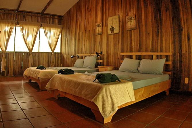 Turtle Beach Lodge – Standard-Zimmer mit zwei Doppelbetten