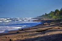 Turtle-Beach-Strand