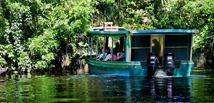 Turtle-Beach-Touren-mit-dem-Boot-durch-die-Flusslandschaft