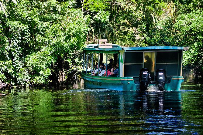 Turtle Beach Lodge Tour – mit dem Boot durch die Flusslandschaft