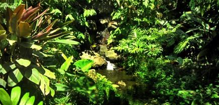 in-bio-parque09