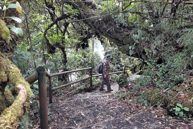 Braulio Carrillo Wanderweg Sektor Barva