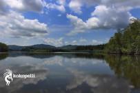 Kokopelli Bootstour Sierpe Lagune (Foto: Claudia Langguth)