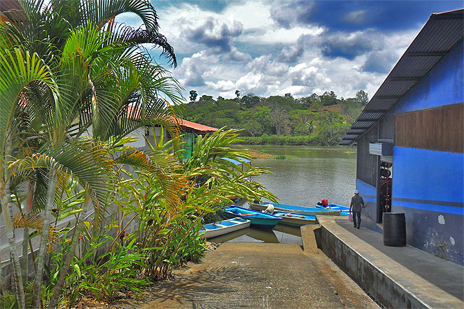 Sierpe Mangroventour – Río-Sierpe