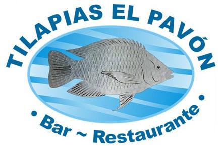 Tilapias-el-Pavon