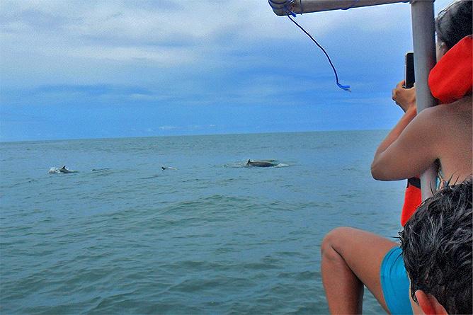 Walbeobachtung Meeresnationalpark Ballena Uvita