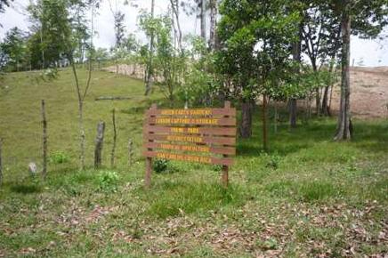 Chambacú