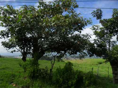 Landschaft am Irazú