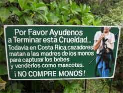 Zoo Ave – Kaufen Sie keine Affen!