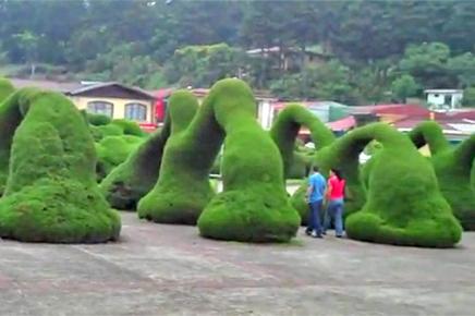 Zarcero – Skulpturenpark