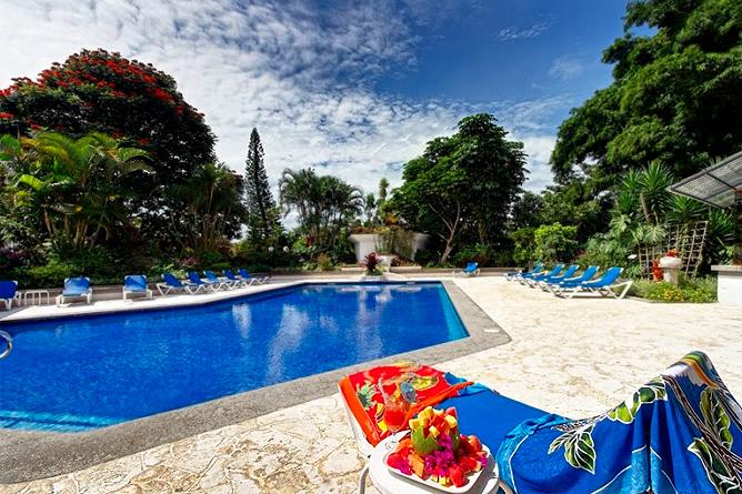 Bougainvillae – Pool
