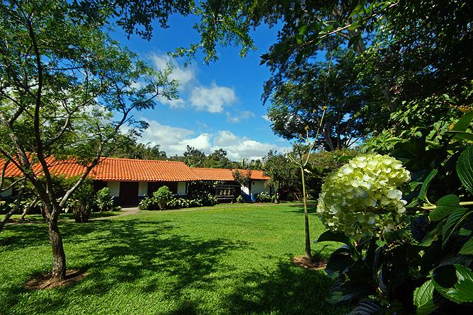 Bougainvillea – Casona