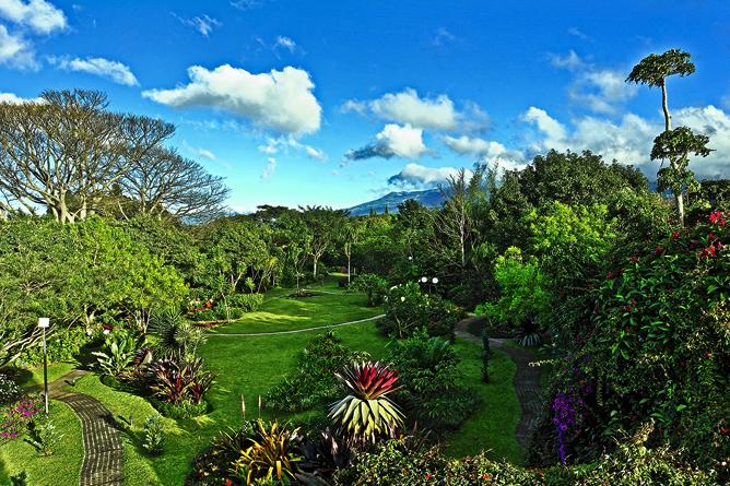 Bougainvillea – Landschaftsgarten, Panorama