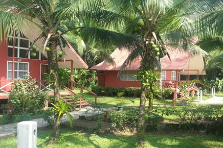 Caribbean Paradise – Bungalow mit Familien-Zimmer