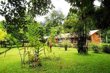 Caribbean Paradise – Garten