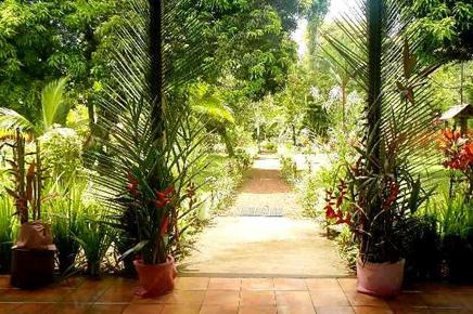 Caribbean Paradise – Eingang zum Restaurant