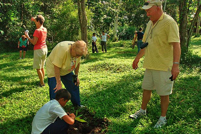 Natural Lodge Caño Negro – Baumpflanzen
