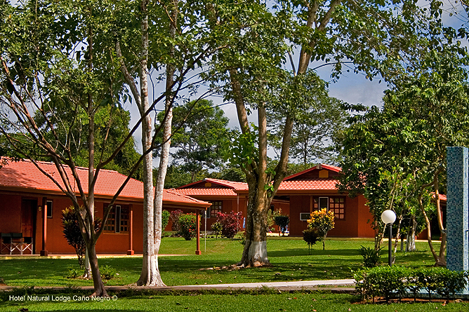 Natural Lodge Caño Negro – Bungalows mit Deluxe-Zimmer