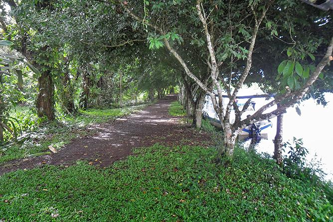 Natural Lodge Caño Negro – Río Frio Flusspromenade