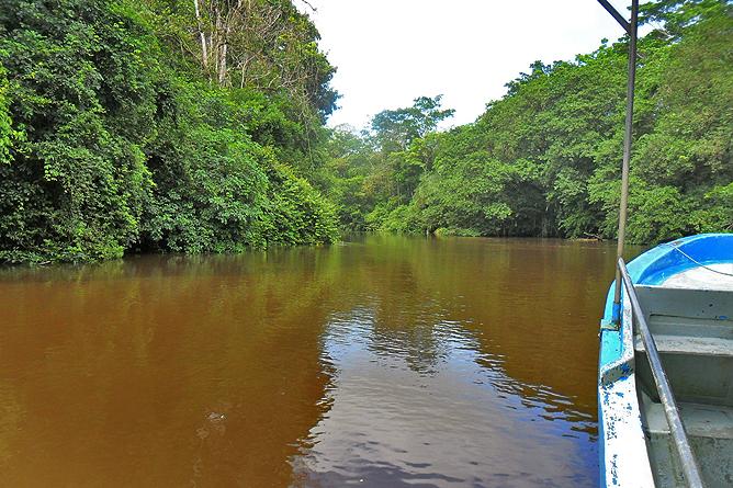Natural Lodge Caño Negro – Río Frio Kanäle