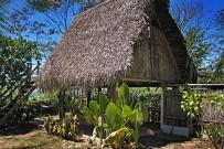 tropical_hut