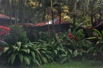 Finca-Luna-Nueva-Garten