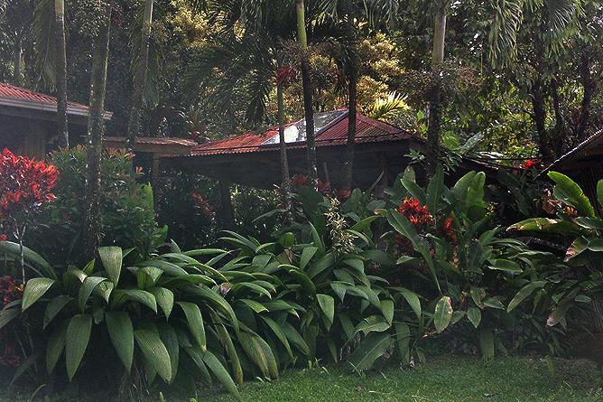 Finca Luna Nueva – Garten