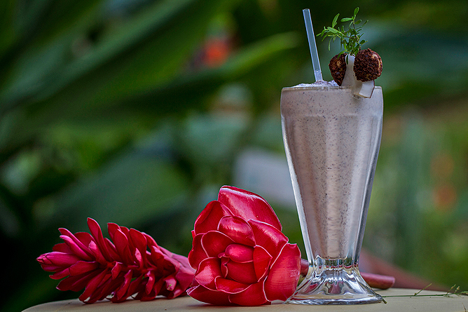 Finca Luna Nueva – Restaurant: Smoothie