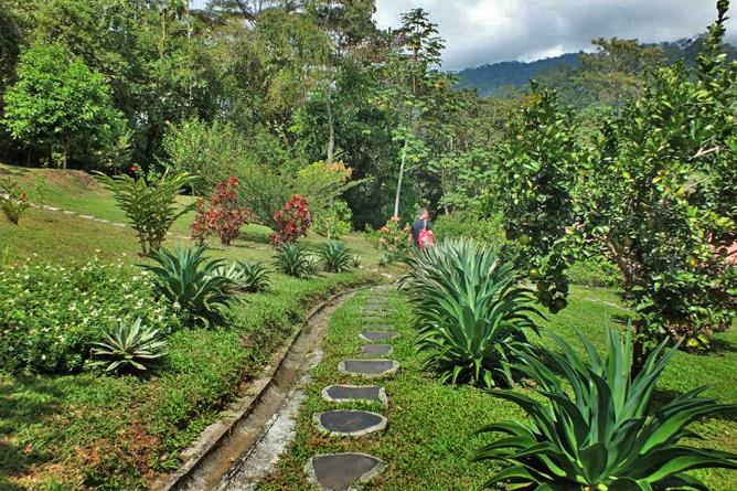 La Cacatúa Lodge – Spazierweg im Garten