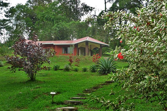 La Cacatúa Lodge – Studio: Aufgang