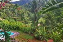 La-Cacatúa-Lodge-Swimmingpool