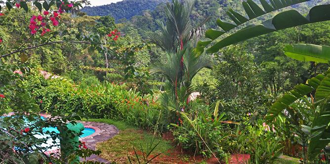 La Cacatúa Lodge – Swimmingpool