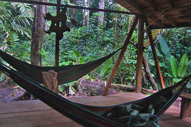 Selva Bananito Lodge – Hängematten auf Plattform
