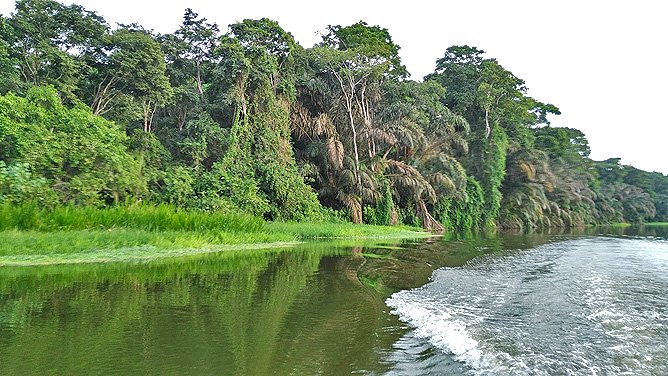 Lirio Lodge Lagune Río Madre de Dios