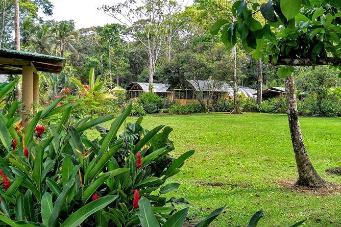 Lirio Lodge tropischer Garten