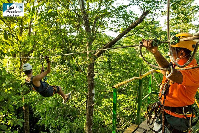 Hidden Paradise Lodge – Canopy Zip Line