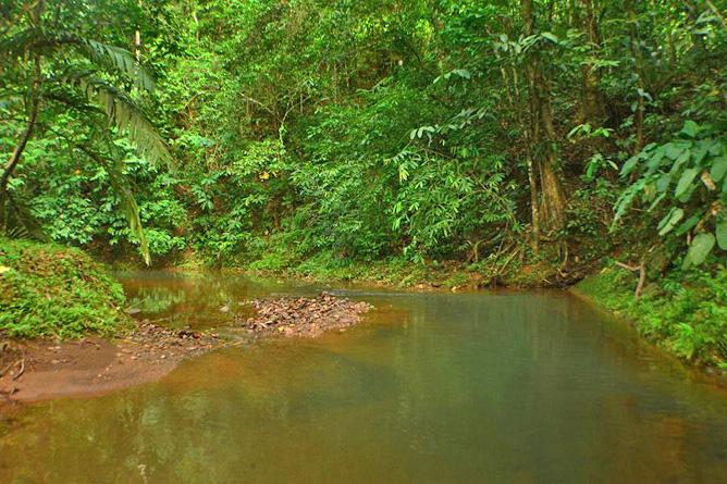 Yaba Chigui Lodge – Lajas-Fluss