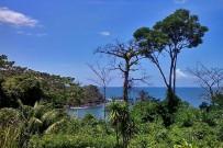 drake-bay-isla-cano-blick