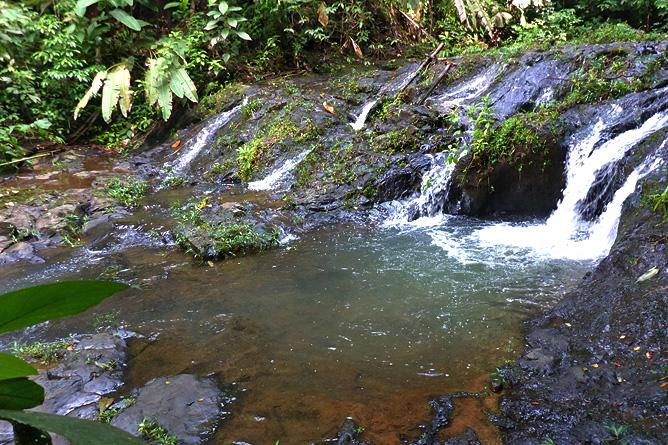 Macaw Lodge – Aktivitäten: Wanderweg zu Wasserfall